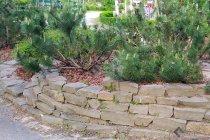 Серо-зелёный кладочный песчаник