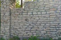 Стена из  известняка